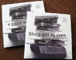 Shale gas as seen by Polish Geological Survey